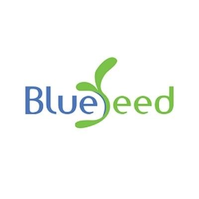 Blueseed Digital