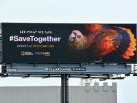 Quảng cáo ngoài trời toàn cầu kêu gọi bảo vệ các loài động vật có nguy cơ tuyệt chủng