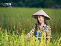 Gợi ý chiến lược digital khai thác thị trường Nông thôn từ Novaon Communication